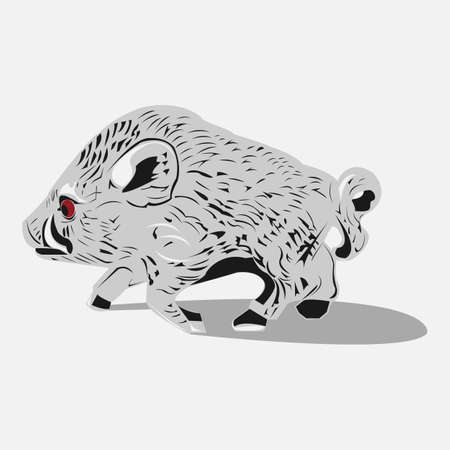 tusks: Wild grey boar