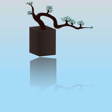 crone: Bonsai tree with reflection.Vector illustration Illustration