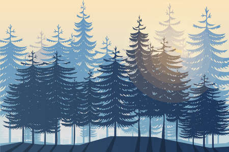 Morning or evening in wild coniferous forest.Vector illustration