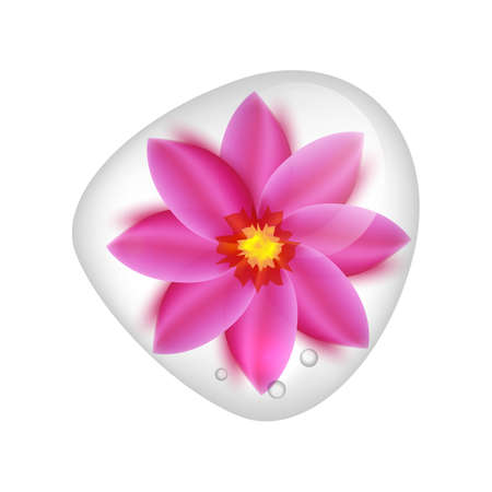 Realistic pink lotus flower under clear water drop.Top view blossom isolated on white background Illustration