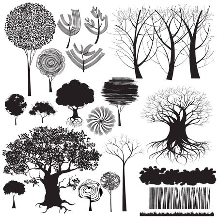 trees forest: Collection of isolated stylized trees and other forest elements. Only some grunge shapes there created using tracing command, all other shapes are drawn manually.