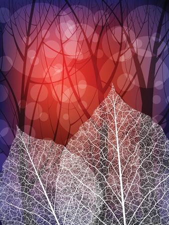 Creative design nature theme background. Eps10  Illustration