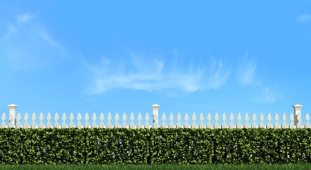 White fence and hedge on blue sky  in a sunny day-rendering photo