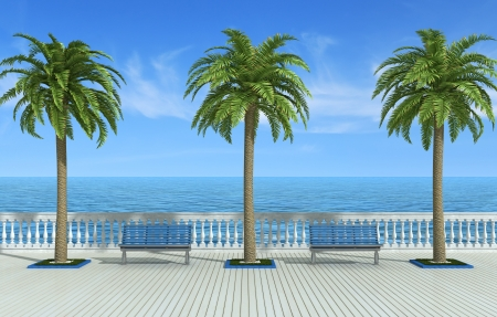 balustrade: Tropical promenade wit palm tree bench and classic balustrade - rendering