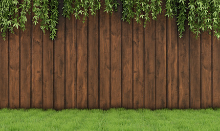 wood fences: Garden with old wooden fence, grass and leaf plant-3D Rendering