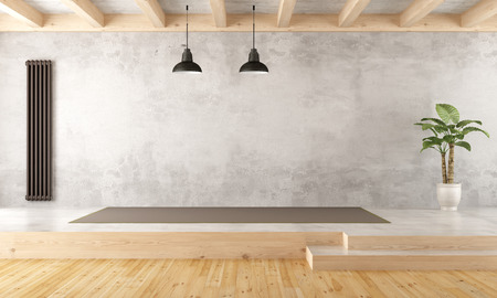 Empty two levels living room with old wall,vertical heater and plant - 3d rendering