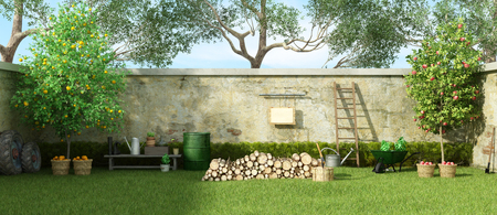 Rural garden with fruit trees and firewood on grass - 3d rendering Фото со стока