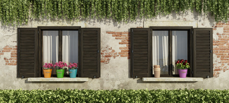 Old facade with wooden windows, flowers on the windowsill and hedges - 3d rendering Фото со стока