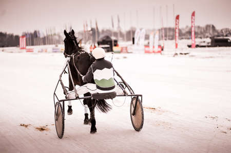 Horse racing in the winter on ice