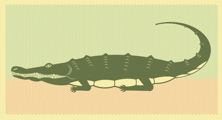 crocodile illustration Vector