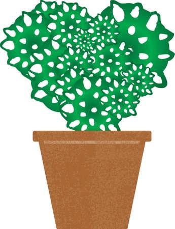 forme de coeur vert cactus dans un pot Illustration