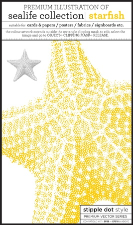 starfish Stock Vector - 15369282