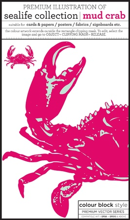 crustacea: stone crab Illustration