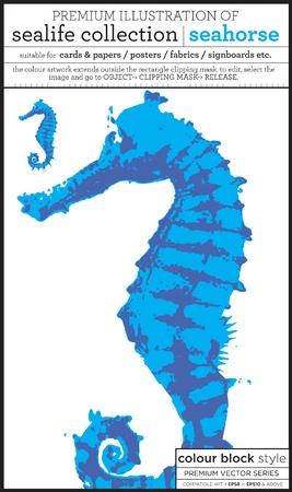 hippocampe Illustration