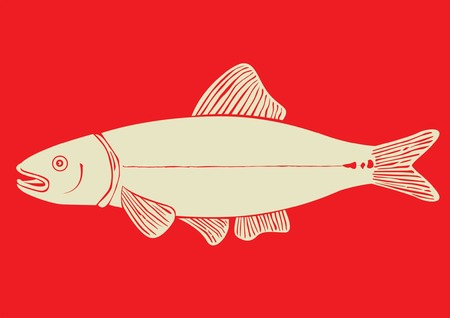 hand drawn fish illustration Illustration
