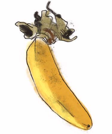 health symbols metaphors: single banana painting Stock Photo