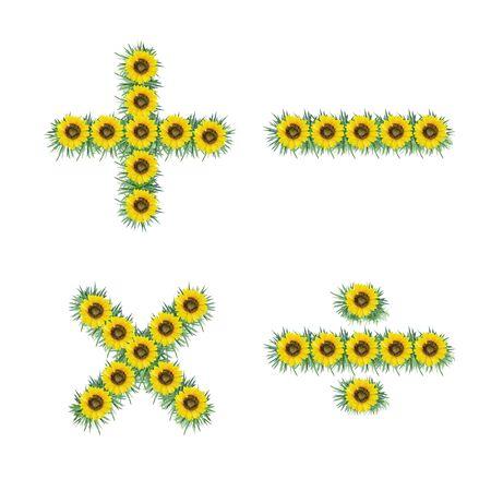 Symbol of sunflower isolated on white background photo