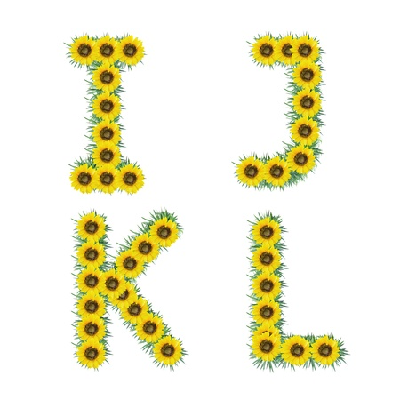 Alphabet of sunflower isolated on white background photo