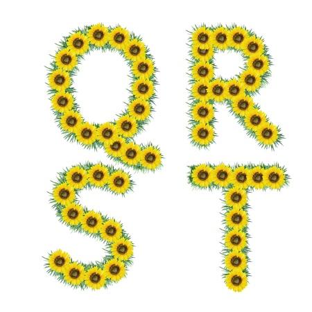 Alphabet of sunflower isolated on white background photo