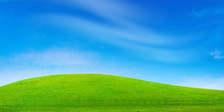 Green field and blue sky Stock Photo - 10691436