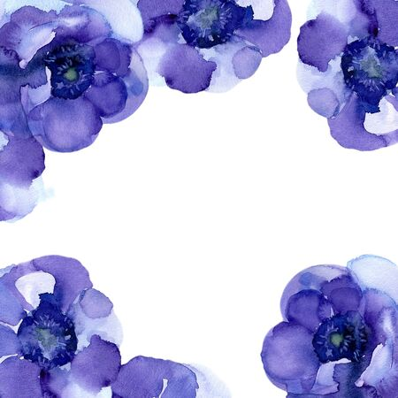 Purple Anemones. Square greeting card with the flowers on a white background. Watercolor illustration. 스톡 콘텐츠