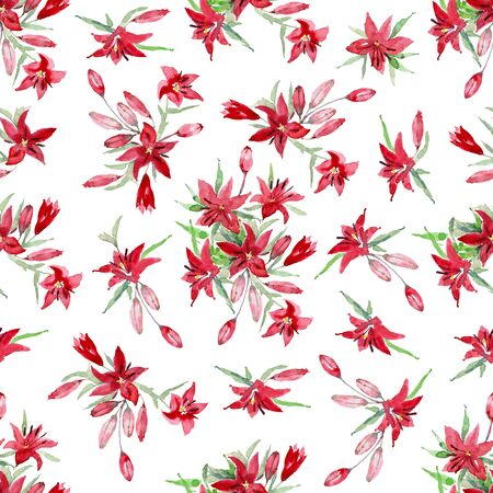 Asiatic lilies Black Out. Set of red flowers, leaves and buds of lilium on a white background. Watercolor Illustration.