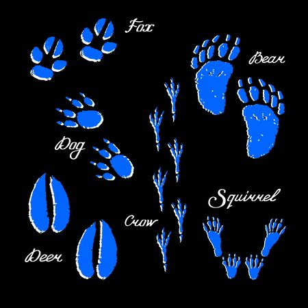 Neon-colored set of animal footprints. Footprints of fox, dog, bear, squirrel, crow and deer on a black background. Hand-drawn collection. Vector illustration of winter symbols.