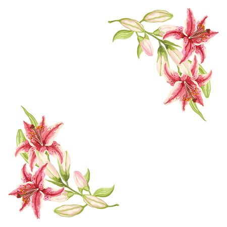 Pink-Red Lily. Frame of pink-red flowers, green leaves and buds on a white background. Hand-drawn collection of greeting cards. Vector illustration.