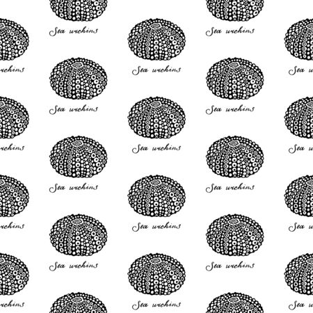 Seamless pattern of Black Sea Urchins and handwritten calligraphy. Monochrome collection of seashells. Vector illustration on a white background.