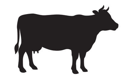 Sign cow. Isolated black silhouette cow on white background. Vector illustration