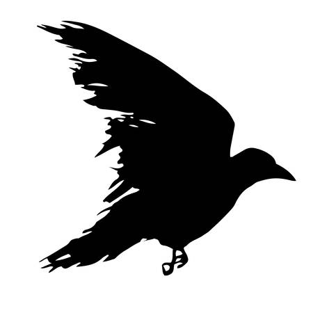 Black silhouette of a raven isolated on white background. Flying crow symbol. Tattoo bird. Vector illustration Ilustracja