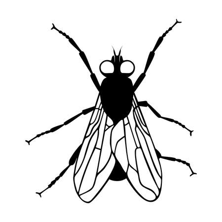 Fly icon silhouette. Isolated black symbol on white background. Vector illustration