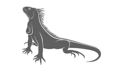 Iguane d'icône. Iguane plat symbole. Iguane de signe gris isolé sur fond blanc. Illustration vectorielle