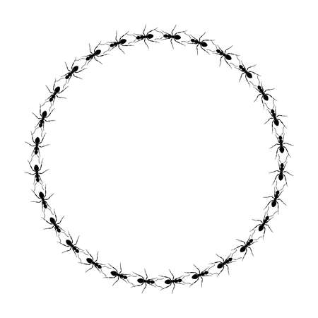 Ants go in a circle. Circle path ants. Ant trail. Vector illustration Vettoriali