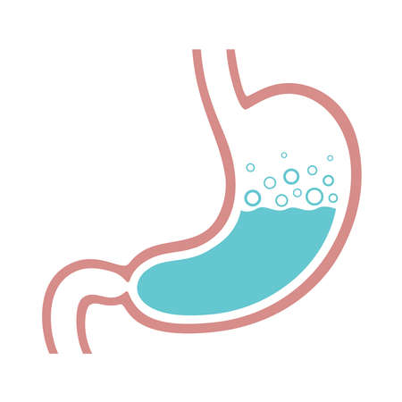 Stomach icon. Stomach gas, gastric acid. Isolated medical symbol on white background. Vector illustration