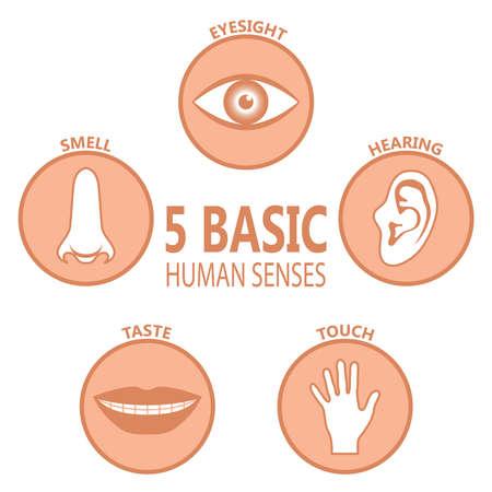 Poster five basic human feelings. Set icons the five senses of human perception. Eyesight, hearing, smell, taste, touch. Vector illustration Ilustrace