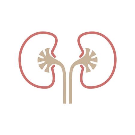 Icon human organ kidneys. Sign human kidneys. Isolated symbol kidneys on white background. Stock vector illustration