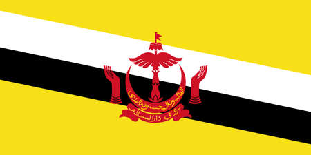 Brunei flag with official colors and the aspect ratio of 1:2. Flat vector illustration.