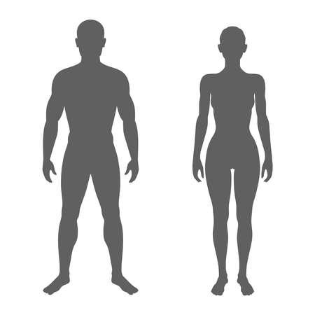Siluetas de cuerpo masculino y femenino. Símbolos aislados de hombre y mujer sobre fondo blanco. Ilustración vectorial