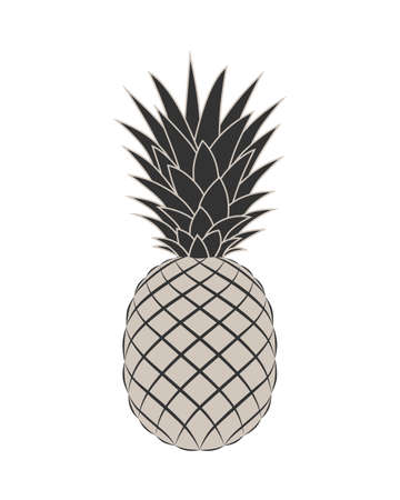 Pineapple graphic icon. Tropical fruit symbol. Pineapple sign isolated on white background. Vector Illustration