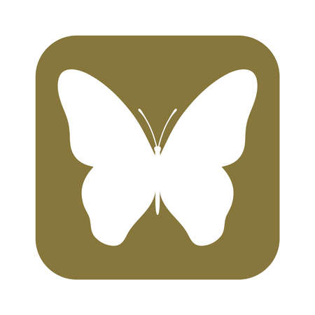 Butterfly graphic symbol. Isolated silhouette in a rectangle on white background. Vector illustration Illustration