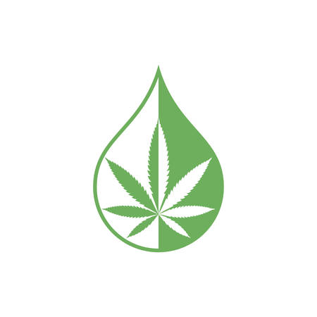 Cannabis oil graphic icon. Sign CDB oil drop with cannabis leaf  isolated on white background. Medical symbol. Vector illustration Banque d'images - 137857997