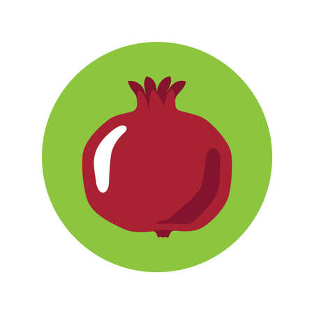 Pomegranate graphic icon. Garnet sign in the circle isolated on white background. Symbol pomegranate fruit. Vector Illustration