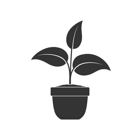 Potted plant graphic icon. House plant in the pot sign isolated on white background. Vector illustration