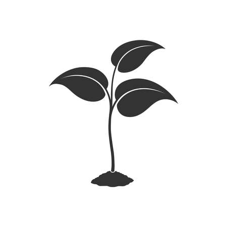 Sprout graphic icon. Young plant growing in the ground sign isolated on white background. Seedling symbol. Vector illustration