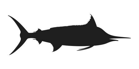 Marlin sea fish graphic icon. Sign blue marlin isolated on white background. Vector illustration 向量圖像