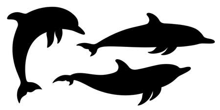 Dolphins graphic icons set. Signs swimming dolphins isolated on white background. Sea life symbols. Vector illustration 向量圖像