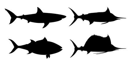 Sea fishes graphic icons set. Shark, tuna, marlin, sailfish, symbols isolated on white background. Vector illustration 向量圖像