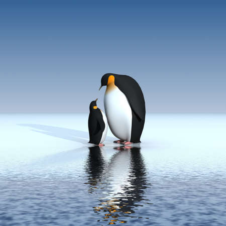 animals in the wild: Fun penguins