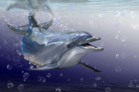 dolphin fish: Dolphin in the sea